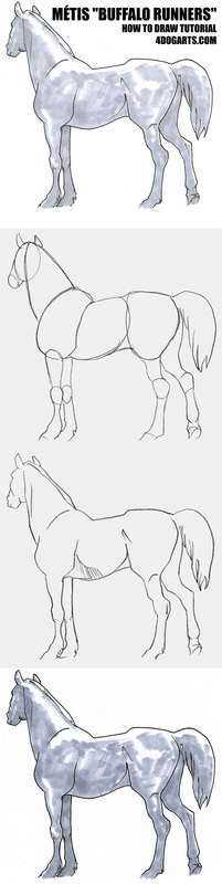 How to draw a Metis