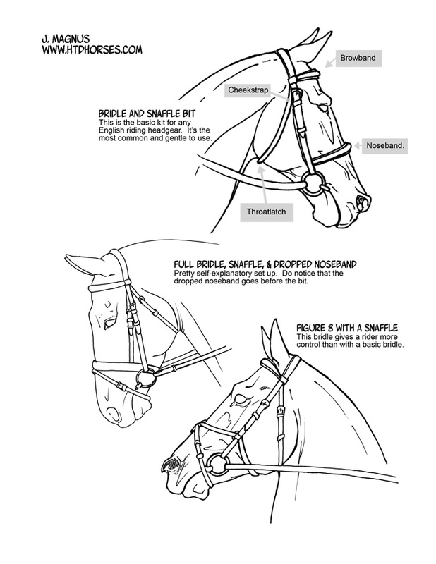 Tack How To Draw Horses